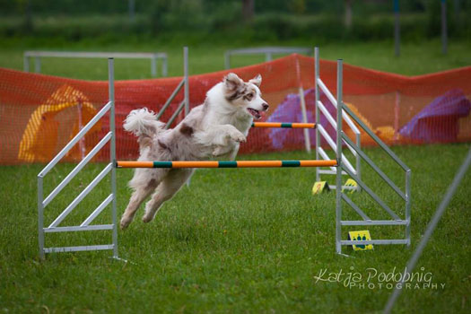 Famy - 4 roky / 4 years old