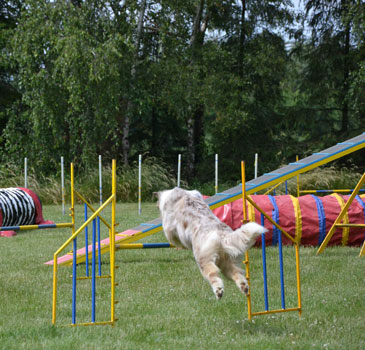 Famy - 3 roky / 3 years old