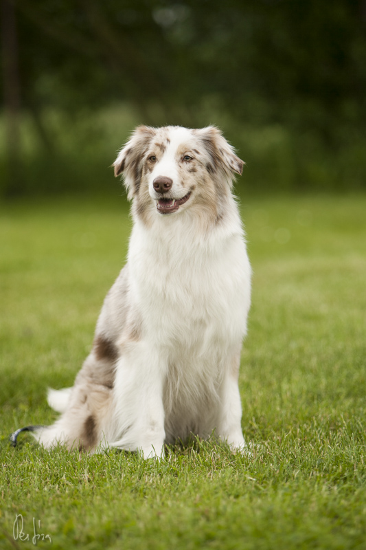 Famy - 2 roky / 2 years old