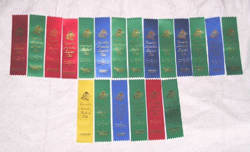 Agility Ribbons