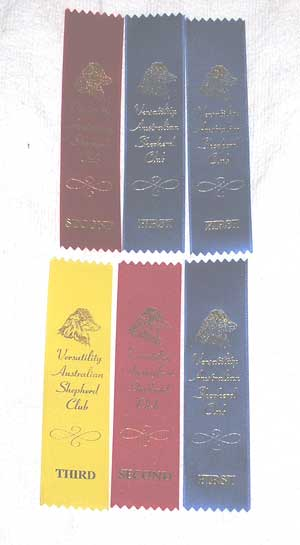 Conformation Ribbons